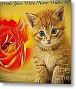 Roses And Kittens Textured Metal Print