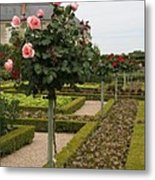 Roses And Salad - Chateau Villandry Metal Print