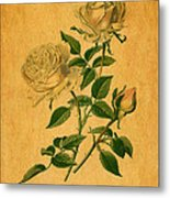 Roses Are Golden Metal Print