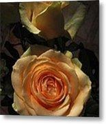 Roses Forever_2 Metal Print