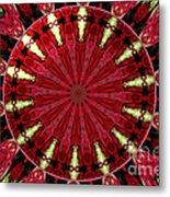 Roses Kaleidoscope Under Glass 11 Metal Print