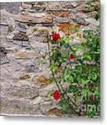 Roses On A Stone Wall Metal Print