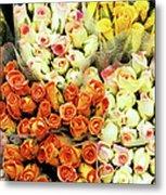 Roses 01 Metal Print