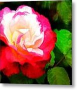 Rosie Red And White Metal Print