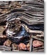 Rotted Railroad Tie Metal Print