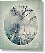 round treetops II Metal Print by Priska Wettstein