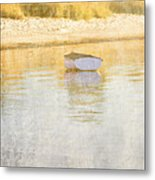 Rowboat In The Summer Sun Metal Print