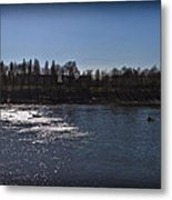 Rowing On Thames In Autumn Metal Print