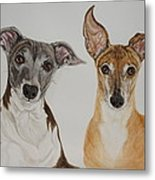 Roxie And Bruno The Greyhounds Metal Print