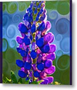 Royal Purple Lupine Flower Abstract Art Metal Print