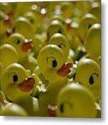 Rubber Ducks Metal Print