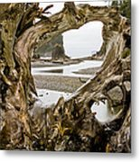 Ruby Beach Driftwood #3 Metal Print