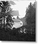 Ruby Beach In The Winter In Black And White Metal Print