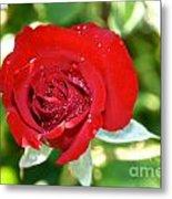 Ruby Rose Diamond Dust Metal Print