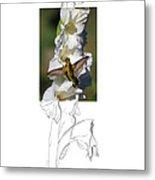 Ruby-throated Hummingbird 2am-104192 Metal Print