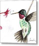 Ruby Throated Hummingbird Metal Print by Brenda Ruark