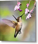 Ruby-throated Hummingbird - Digital Art Metal Print