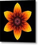 Rudbeckia I Flower Mandala Metal Print