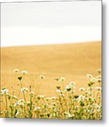 Run With Me Through A Field Of Wild Flowers Metal Print by Artist and Photographer Laura Wrede