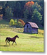 Running Horse And Old Barn Metal Print