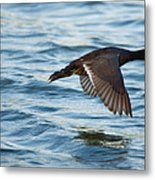 Running On Water Series 7 Metal Print