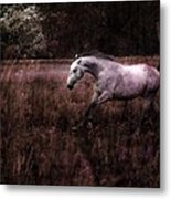 Running Through The Purple World Metal Print
