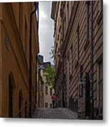 Running Up The Lane Metal Print