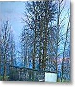 Rural Character Metal Print by Gwyn Newcombe