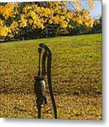 Rural Connecticut Autumn Metal Print