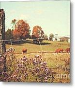 Rural Country Scene Metal Print