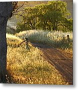 Rural Road 2am-009691 Metal Print