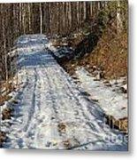 Rural Road In Eary Spring. Metal Print
