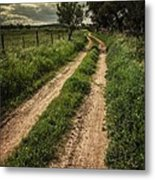 Rural Trail Metal Print