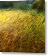 Ruralscape #8. Field And Wind Metal Print