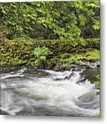 Rushing Water At Cedar Creek Washington State Metal Print