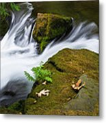 Rushing Water At Whatcom Falls Park Metal Print