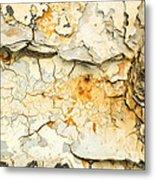 Rust And Peeling Paint Metal Print