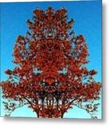 Rust And Sky 2 - Abstract Art Photo Metal Print