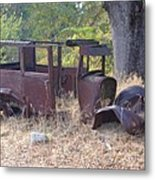 Rust In Full Bloom Metal Print