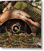 Rusted Metal Print by Louise Heusinkveld
