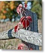 Rustic Autumn Metal Print