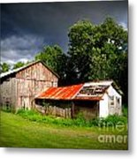 Rustic Beauty Metal Print