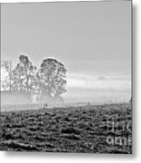 Rustic Morning In Black And White Metal Print