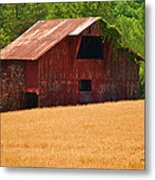 Rusty Coat Metal Print