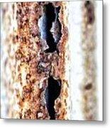 Rusty Fence Metal Print