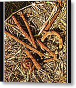 Rusty Nails Metal Print