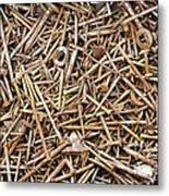 Rusty Nails Metal Print