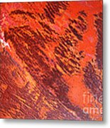 Rusty Textures Metal Print