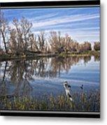 Sacramento Wildlife Refuge Pond With Blue Heron Metal Print