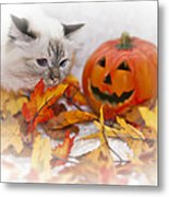 Sacred Cat Of Burma Halloween Metal Print